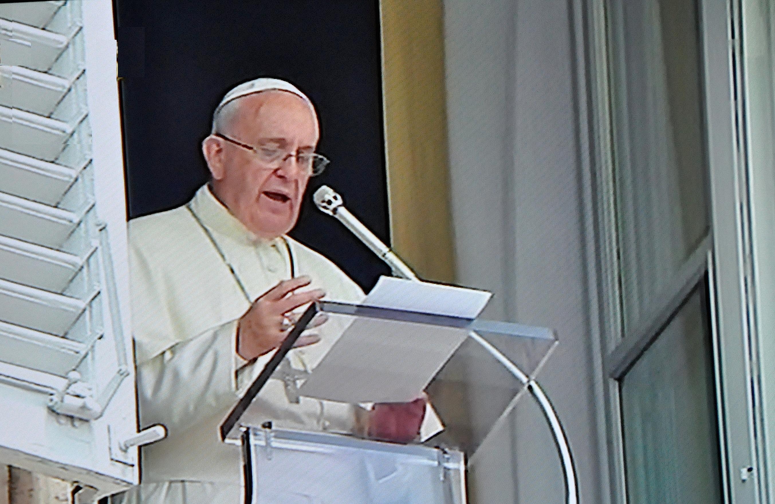Pope Francis pray the angelus Sunday 14 june 2015