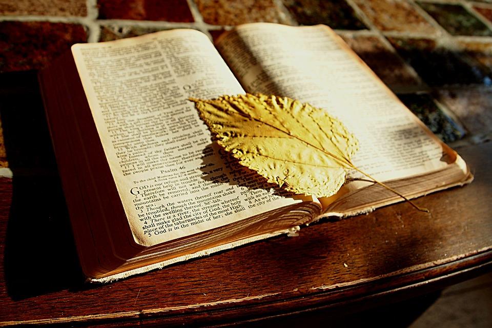 bible - Pixabay - CC0